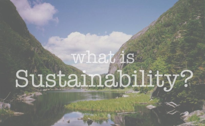 what is sustainability Sustainability has often been defined as how biological systems endure and  remain diverse and productive but, the 21st-century definition of sustainability  goes.